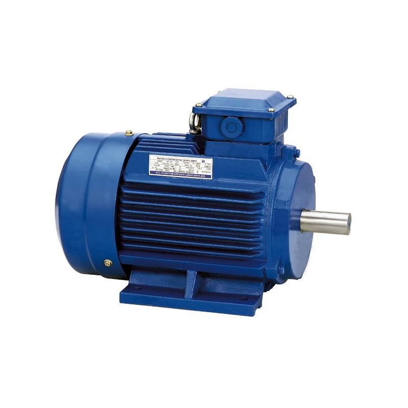 Motori elettrici per pompe b3 b5 b14 atex for Motori elettrici per macchine da cucire